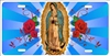 Our Lady of Guadalupe personalized novelty front license plate Decorative vanity car tag