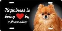 Pomeranian personalized novelty license plate Custom License Plates, Personalized License Plates, Decorative License Plates, Front License Plates, Car Tags, airbrush