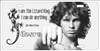 The Doors Lizard King novelty front license plate Decorative Vanity Rock n Roll car tag