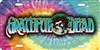 Grateful Dead on tie dye custom car tag