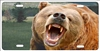 Grizzly Bear Roar Personalized Novelty Front License Plate Decorative Vanity Car Tag