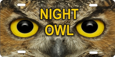 Night Owl novelty license plate Custom License Plates, Personalized License Plates, Decorative License Plates, Front License Plates, Car Tags, airbrush