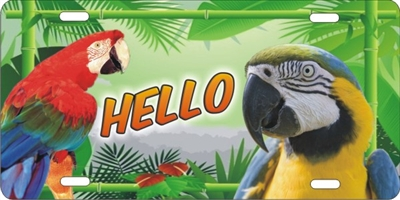 parrots license plate Custom License Plates, Personalized License Plates, Decorative License Plates, Front License Plates, Car Tags, airbrush
