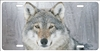 wolf in snow custom license plate Custom License Plates, Personalized License Plates, Decorative License Plates, Front License Plates, Car Tags, airbrush