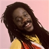 Dennis Brown: The Prophet Rides Again - 3 CD's