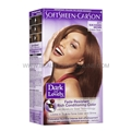 Dark & Lovely Sun Kissed Brown 377 Permanent Hair Color