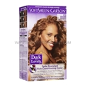 Dark & Lovely Golden Bronze 379 Permanent Hair Color