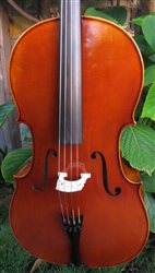 Professional level cello made in germany by Bernd Dimbath.