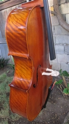 Cello - Scott Cao STC 750 copy of G. B. Guadagnini 1777