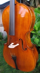 Eastman model 504 cello