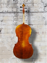 Vivo 'Ariana Superior' 4/4 Cello