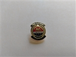 Past District President Pin