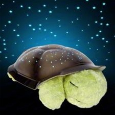 Twilight Mocha Turtle Plush Night Light