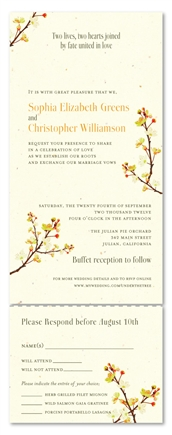 Spring Wedding Invitations  blossoms branchings