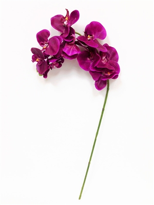 Real Touch Lau's Flowers Artificial Flower Phalaenopsis Orchid