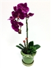 Phalaenopsis Orchid Real Touch Flower