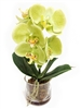 13 Inch Phalaenopsis Orchid Real Touch Artificial Flower Arrangement