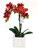 Orange Colored 13 Inch Phalaenopsis Orchid Real Touch Artificial Flower Arrangement