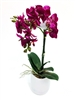 18 Inch Phalaenopsis Orchid Real Touch Artificial Flower Arrangement