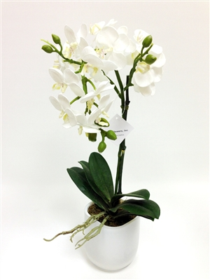 Phalaenopsis Orchid Silk Flower Arrangements