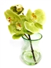 8 Inch Green Phalaenopsis Orchid Real Touch Artificial Flower Arrangement