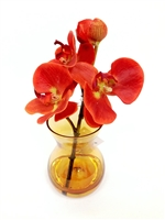 8 Inch Orange Phalaenopsis Orchid Real Touch Artificial Flower Arrangement