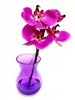 Purple Phalaenopsis Orchid Real Touch Artificial Flower Arrangement