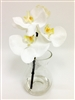White Phalaenopsis Orchid Flower Arrangement w/Glass Vase