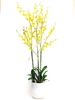 "45"" Oncidium Silk Flower Arrangement - Hard Plastic Vase"