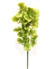 Green Vanda Orchid Real Touch Flower Stem
