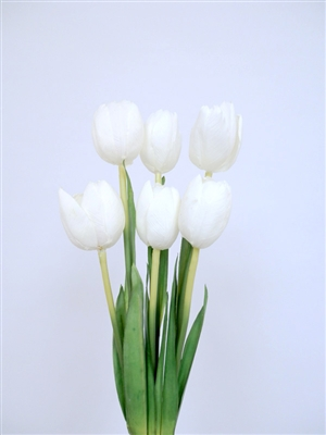 21 inch Silk White Tulip Flower Bush X 6
