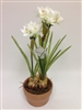 U.S. Daffodil Silk Flower Ceramic Pot