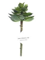 Single Succulent Stem  in Green Color
