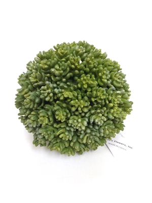 "5.5"" Boxwood Ball"
