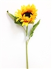 diamond yellow sunflower stem