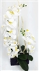 Phalaenopsis Real Touch Orchid Ship w/Black Ceramic Pot