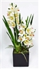 White Cymbidium Orchid Flower Pot