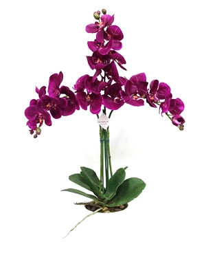 "28.5"" Phalaenopsis Orchid Real Touch Artificial Flower Arrangement"