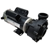 Pump Assembly, LX, 48FR, 230V, 2SP, 3.0HP, 10.0/3.0A, 2""