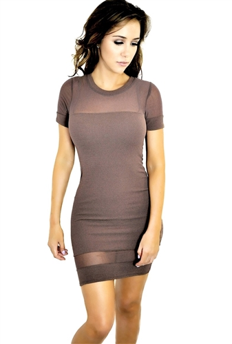 Sheer mesh insert bodycon dress