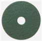 RENOWN SCRUBBING PAD 13 IN. GREEN