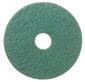 RENOWN SCRUBBING PAD 16 IN. GREEN