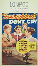 Original Mini Window Cards Thoroughbreds Don't Cry