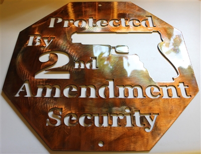 2nd Amendment Protection Metal Wall Art