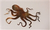 Octopus #2 Copper/Bronze Metal Art