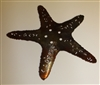 Starfish Metal Wall Art Decor