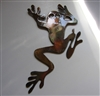 Rainforest Tree Frog Metal Wall Art