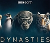 (Releases 2019/02/26) Dynasties 10/18 Disc 1 Blu-ray (Rental)