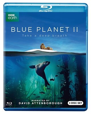 Blue Planet II Disc 2 Blu-ray (Rental)