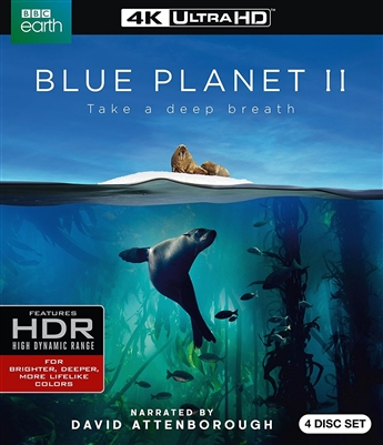 Blue Planet II Disc 1 4K UHD Blu-ray (Rental)